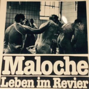 MalocheimRevier